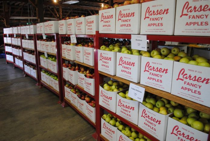 Overcoming the Biggest Challenges Faced in the Food Supply Chain